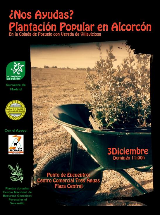 3 DIC 2017 plantacion copia